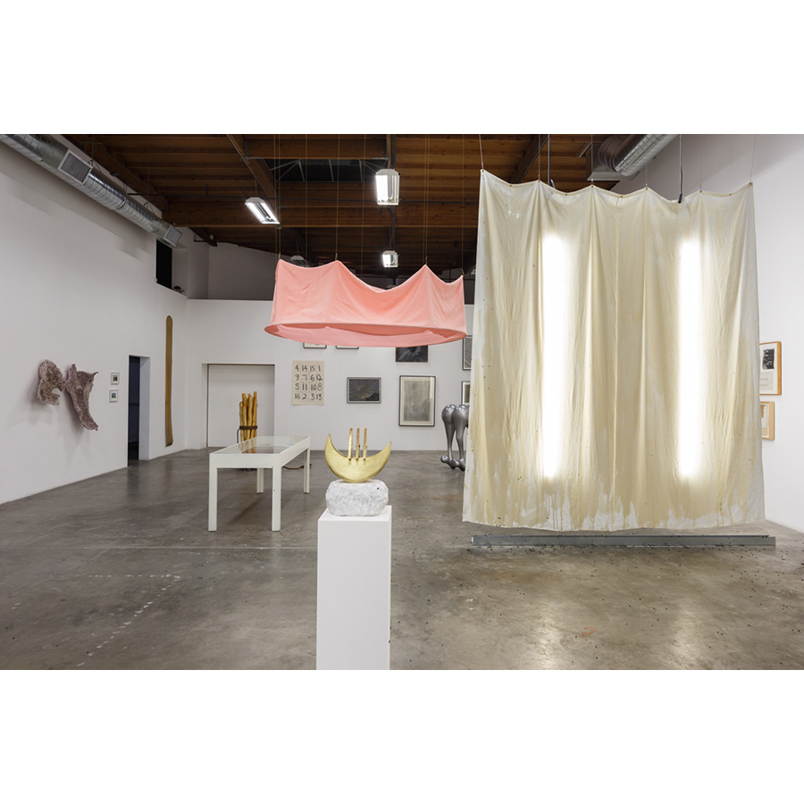 Let Power Take A Female Form Eugenia Butler, Eugenia P. Butler, Corazon del Sol Installation view The Box LA Photo: Fredrik Nilsen