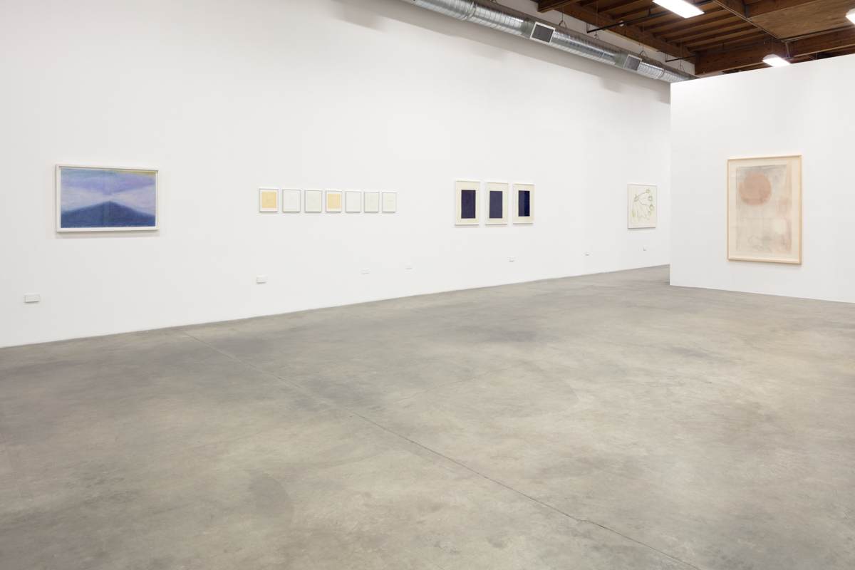 Installation view, That Which Emerges, 2018, The Box LA.